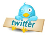 I Will Promote Your Website, Product, Etc On My Twitter. I Have Over 8,000 Followers